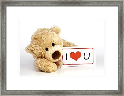 Teddy Bear With I Love You Sign Framed Print by Blink Images