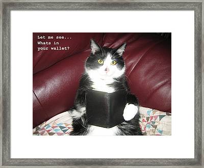 Teddy The Ninja Cat Wants To Know Whats In Your Wallet  Framed Print by Reb Frost