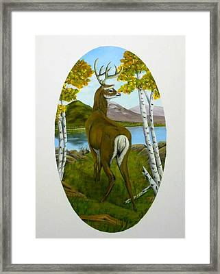 Teddy's Deer Framed Print