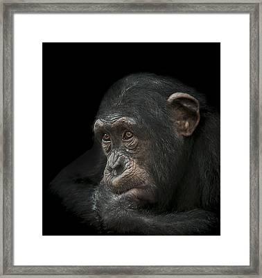 Tedium Framed Print by Paul Neville