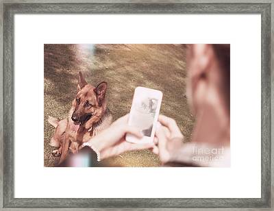 Teen Girl Taking Photo Of Dog With Smartphone Framed Print by Jorgo Photography - Wall Art Gallery