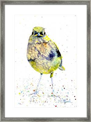 Teenage Robin Framed Print