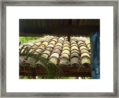 Tejas Framed Print