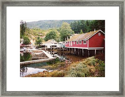 Telegraph Cove 2 Photograph Framed Print by Kimberly Walker