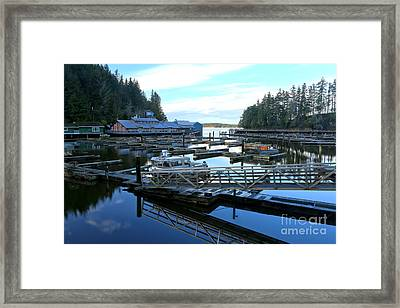 Telegraph Cove Marina Framed Print by Adam Jewell