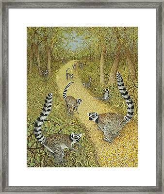 Telling Tales Framed Print by Pat Scott