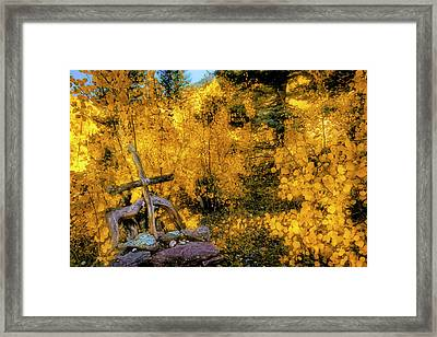 Framed Print featuring the photograph Telluride Spirituality - Colorado - Autumn Aspens by Jason Politte