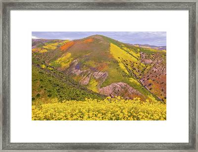 Framed Print featuring the photograph Temblor Range Color by Marc Crumpler
