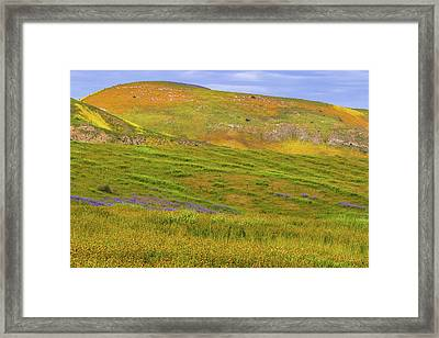 Framed Print featuring the photograph Temblor Range Spring Color by Marc Crumpler