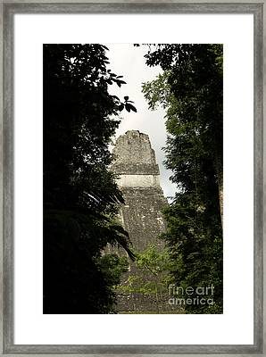 Temple In The Trees Tikal Guatemala Framed Print by John  Mitchell
