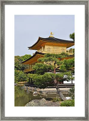 Temple Of The Golden Pavilion Framed Print