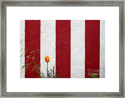 Framed Print featuring the photograph Temple Wall by Ethna Gillespie