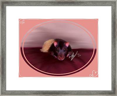 Templeton The Pet Fancy Rat Framed Print