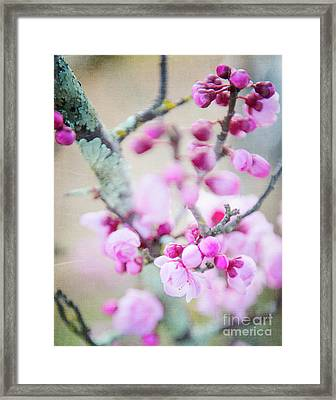 Framed Print featuring the photograph Temptation Of Pink by Ivy Ho