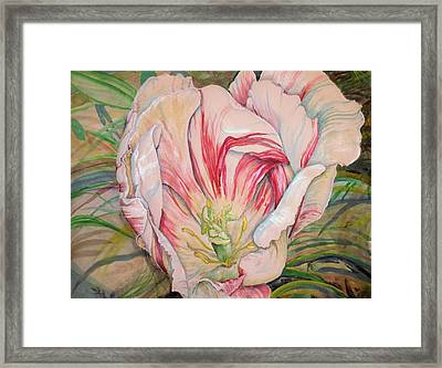 Tempting  Tulip Framed Print