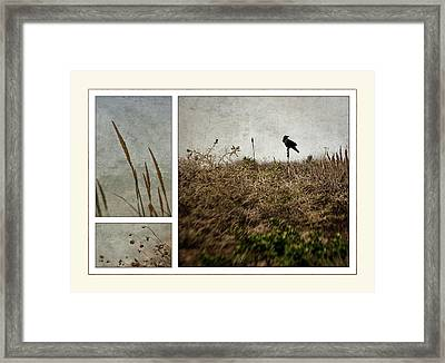 Ten Is For Sorrow Framed Print by Kevin Bergen