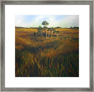 Ten Palms Framed Print by Michele Hollister - for Nancy Asbell
