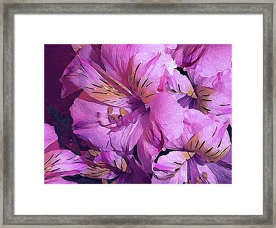 Tender Lilies Three No. 15 Framed Print
