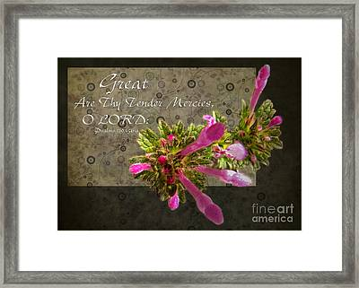 Tender Mercies Framed Print