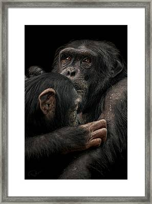 Tenderness Framed Print by Paul Neville