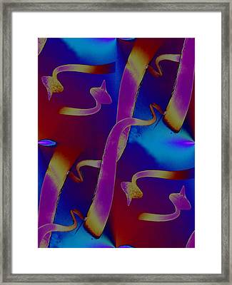 Tendrils To The Sky Framed Print by Tim Allen