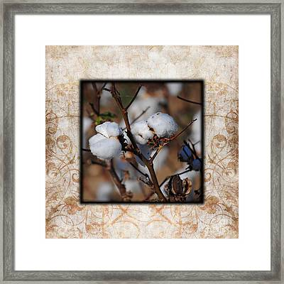 Tennessee Cotton II Photo Square Framed Print by Jai Johnson