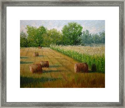 Tennessee Hay And Corn Fields Framed Print by Paula Ann Ford