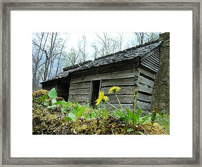 Tennessee Homestead Framed Print by Linda Russell