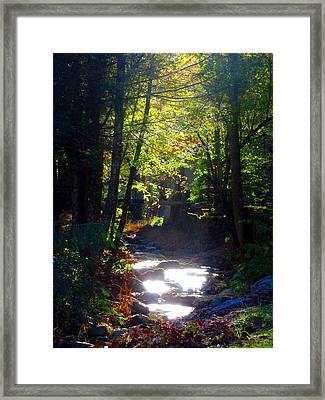 Tennessee Spring Framed Print by Brittany H
