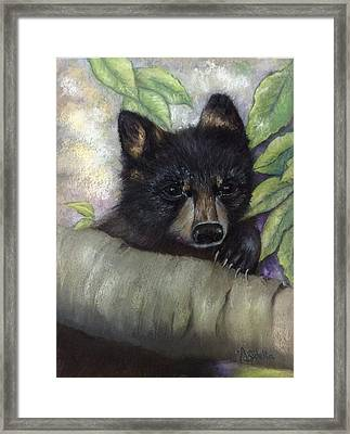 Tennessee Wildlife Black Bear Framed Print