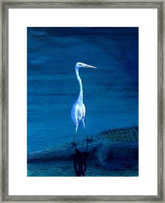 Tenuous Footing Framed Print by Haldy Gifford