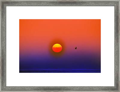 Tequila Sunrise Framed Print by Bill Cannon