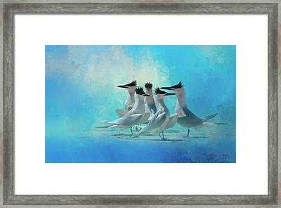 Tern And Look Framed Print by Marvin Spates