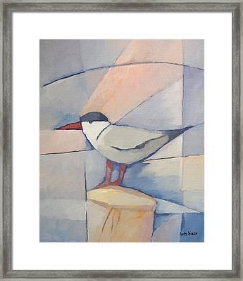 Tern On Bollard Framed Print by Lutz Baar