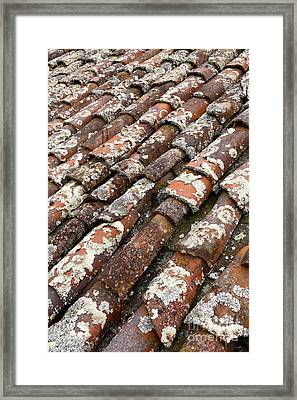Terra Cotta Roof Tiles Framed Print by Gaspar Avila