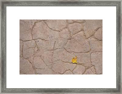 Terra Firma Abstract Framed Print