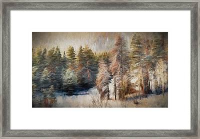Terra Incognita Framed Print