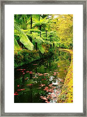 Terra Nostra Park Framed Print by Gaspar Avila
