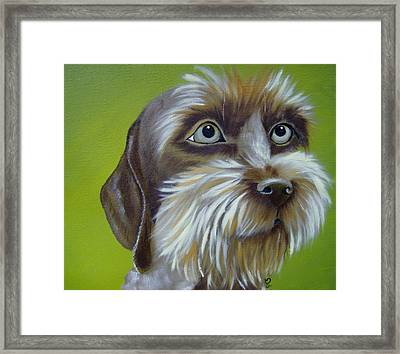 Terrier Waiting Patiently Framed Print