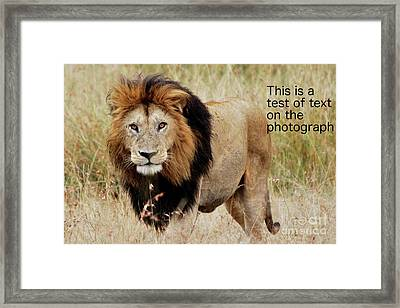 Test Of Text Framed Print by Alan Clifford