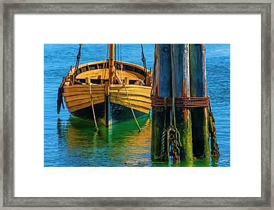 Tethered Framed Print