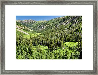Teton Canyon Framed Print