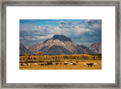 Framed Print featuring the photograph Teton Horse Ranch by Darren White