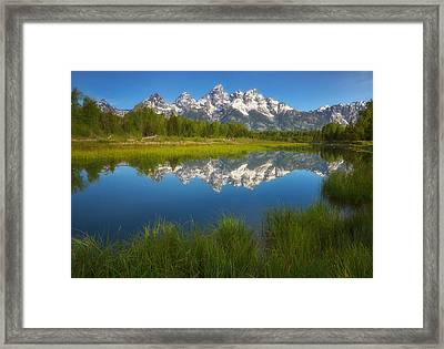 Teton Meadows Framed Print