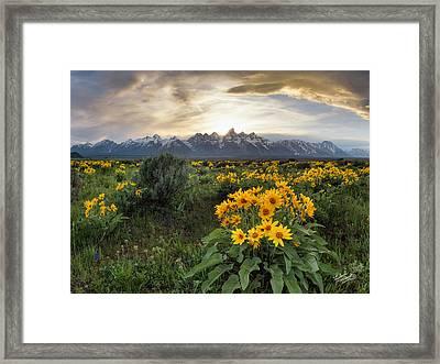 Teton Spring Framed Print by Leland D Howard