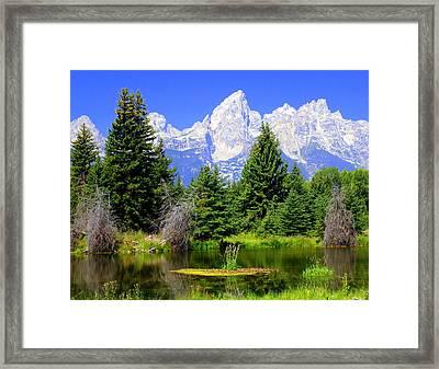 Tetons 3 Framed Print by Marty Koch