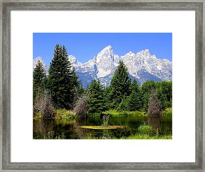 Tetons Framed Print by Marty Koch