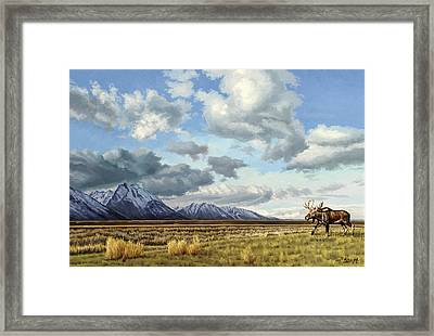 Tetons-moose Framed Print