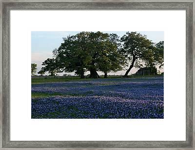 Texas Backroads Framed Print