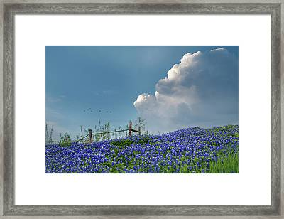 Framed Print featuring the photograph Texas Bluebonnets And Spring Showers by David and Carol Kelly